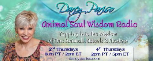 Animal Soul Wisdom Radio: Tapping into the Wisdom of Our Animals, Angels and Masters with Darcy Pariso : Amazing Animal Stories: The Inside Scoop!